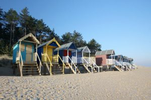 A row of colourful beach huts on a bright, sunny day at Wells-next-the-Sea, with frosty sand in the foreground and pine trees behind.