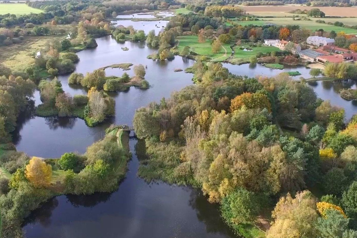 An aerial view of the woodland and wetland of Pensthorpe Natural Park, a 700-acre nature reserve.