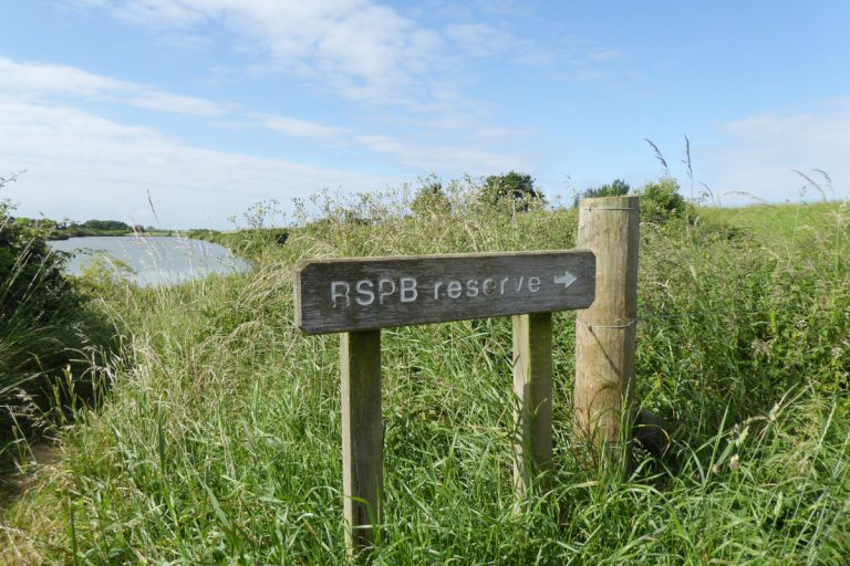 A wooden RSPB Reserve sign surrounded by tall grass.