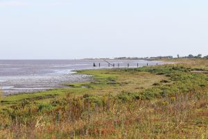 The tide coming in over the marshes at Snettisham Nature Reserve.