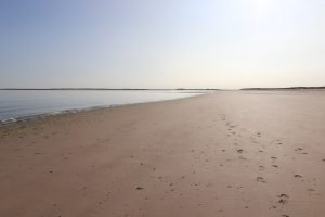 Footprints in the sand at Brancaster beach.