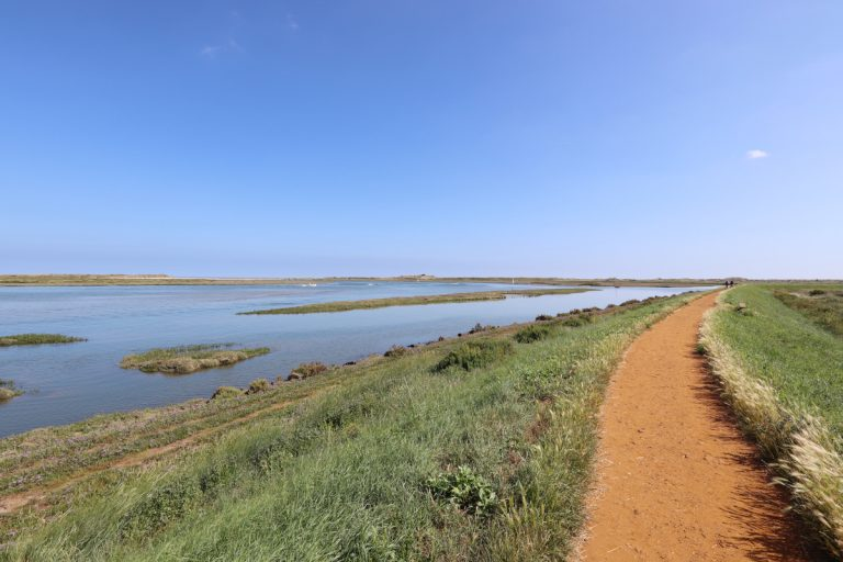 The path at Burnham Overy Staithe leading to the beach.