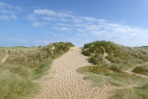 The grassy, sandy entrance to the beach at Burnham Overy Staithe.