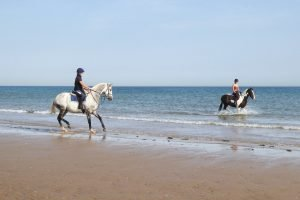 Horse riders on the beach and in the sea at Holkham.