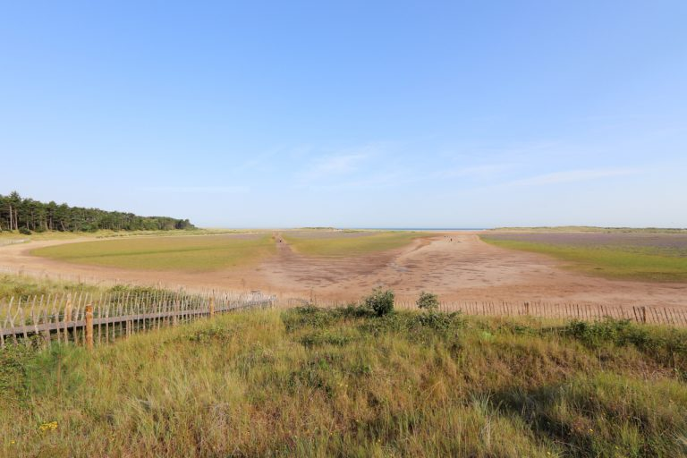 The entrance to Holkham beach with grasses and fencing.