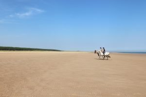 Horse riders on the beach at Holkham.