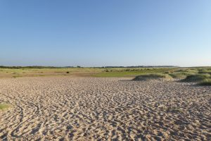The sandy beach and grassy dunes at Holme beach.