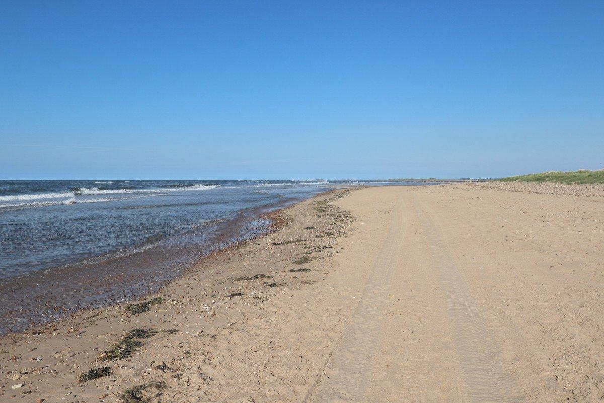 Thornham Beach - North Norfolk Beach Review - Wells Guide