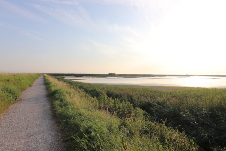 The main path at Titchwell Marsh next to a grassy lagoon.