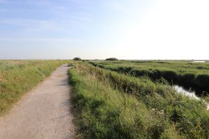 The main path leading to the beach at RSPB Titcwell Marsh.