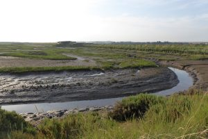 Muddy marshland and the Parrinder hide in the distance at Titchwell.
