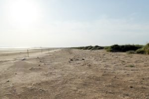 The vast empty beach at Titchwell Marsh in Norfolk.
