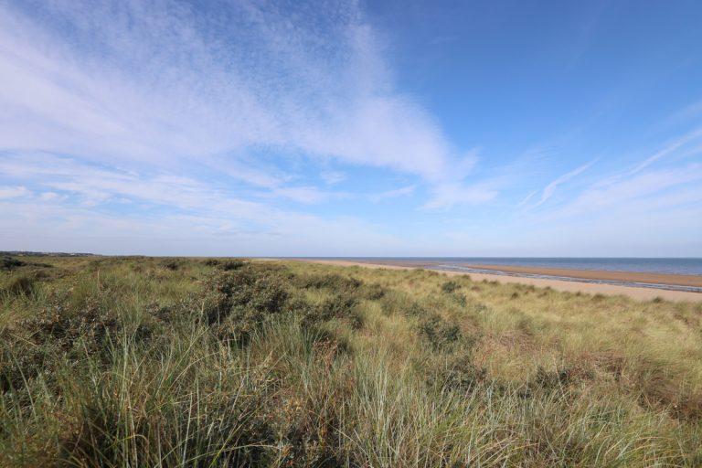 Grassy heathland and dunes at Holme beach with blue sky and wispy clouds.