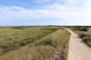 The path winding through heathland towards Holme beach in Norfolk.