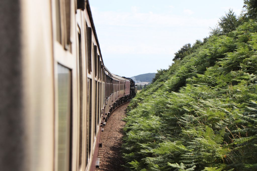 The Poppy Line train passing a hill of ferns.