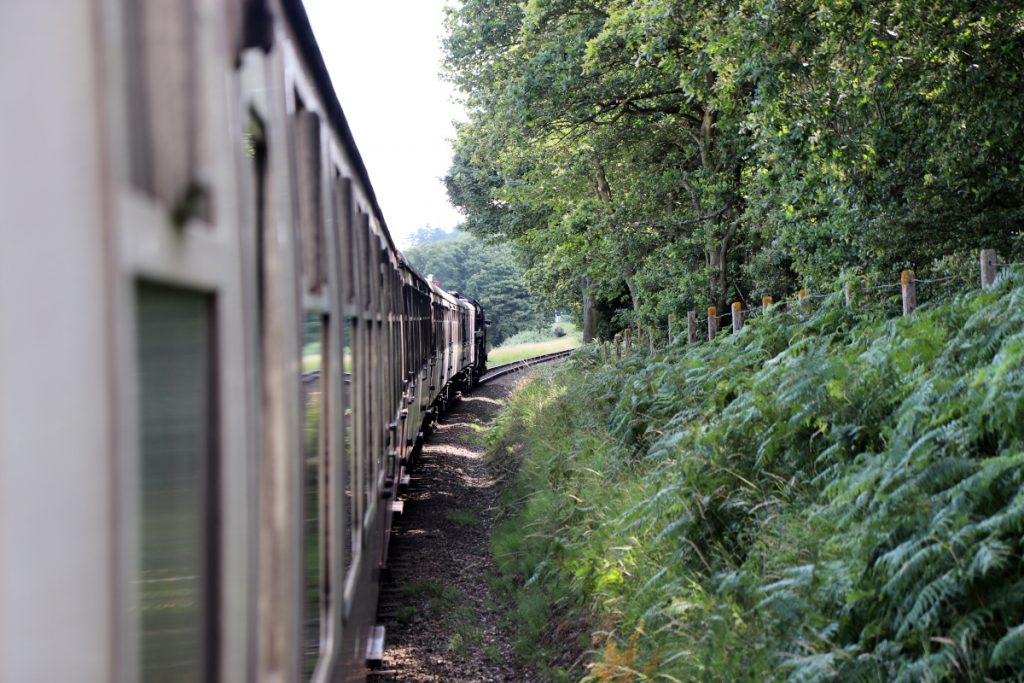 The North Norfolk Railway snaking round the tracks next to trees and ferns.