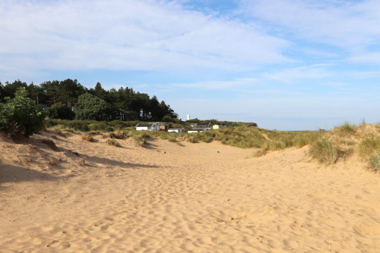 Beach huts in the dunes, pinetrees and the lighthouse at Old Hunstanton beach.