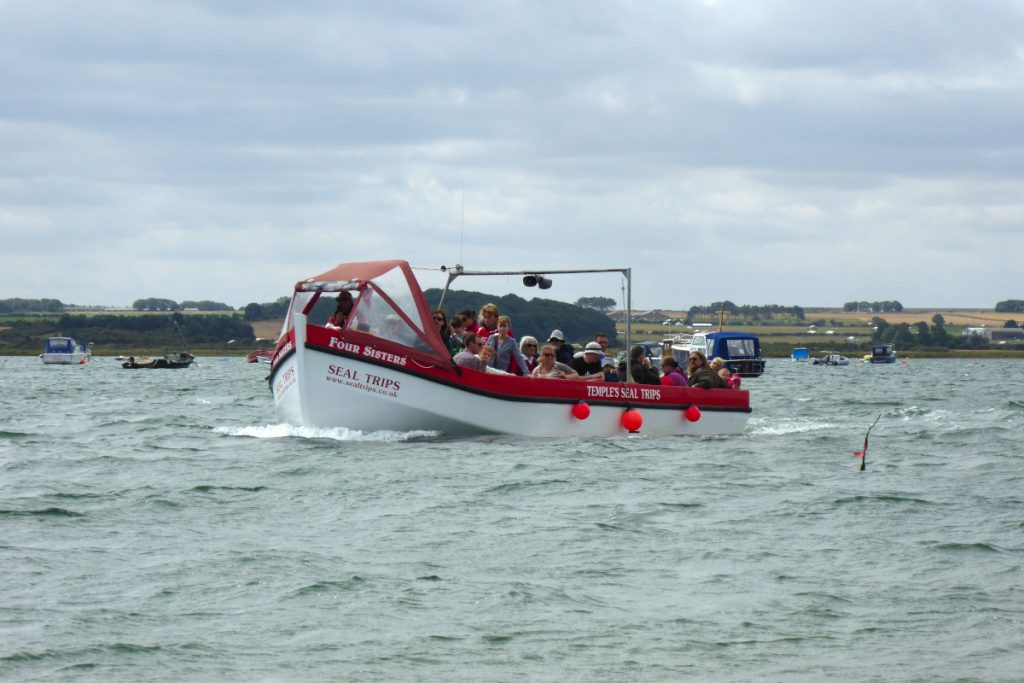 A boat filled with passengers returning from a Temples seal trip in Norfolk.